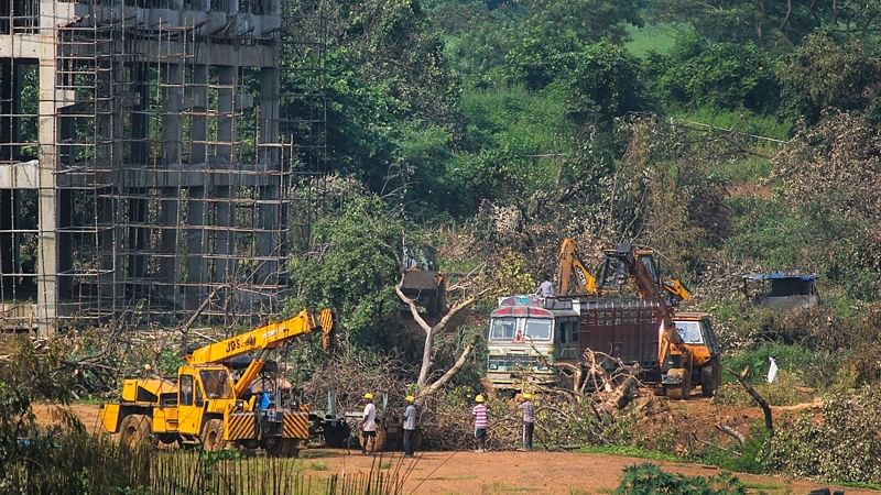 FPJ Fast Facts: 600-acre Aarey land near national park earmarked as forest - here's what we know so far