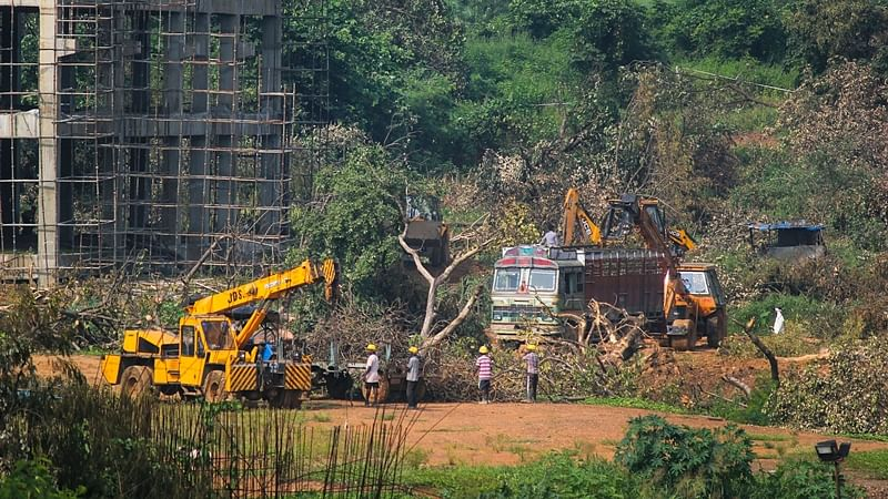 A crane lifts the the fallen trees to be carried away for building a construction site of metro car parking shed at Aarey Colony, Mumbai, Monday, Oct. 7, 2019.