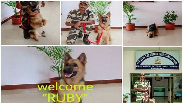 CISF welcomes 'newest, highly trained' K9 member in canine squad at ASG Hyderabad