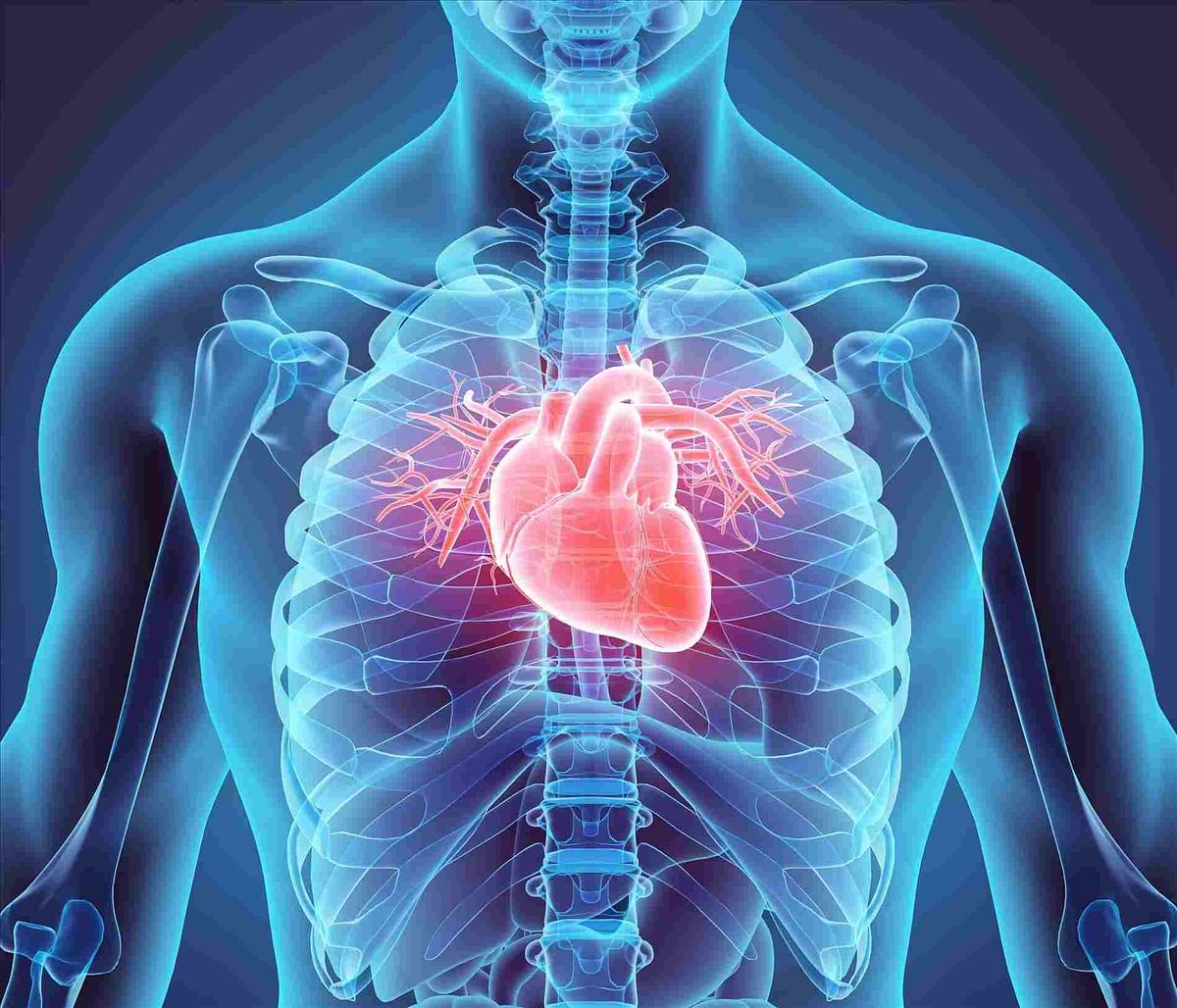 Taller people face increased risk of irregular heartbeats