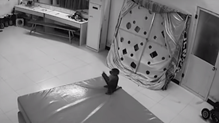 A monkey in a Chinese zoo was caught on camera indulging in some online shopping.
