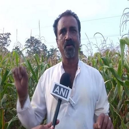 Karnataka: Farmer finds unique, low-cost method to save crops from wild animals