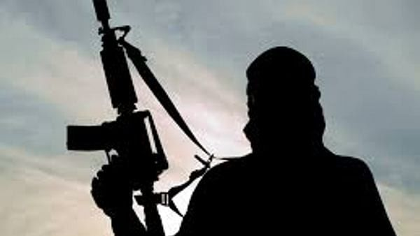 Terror groups operating from Pak; 'Non-reversible' action needed: UK