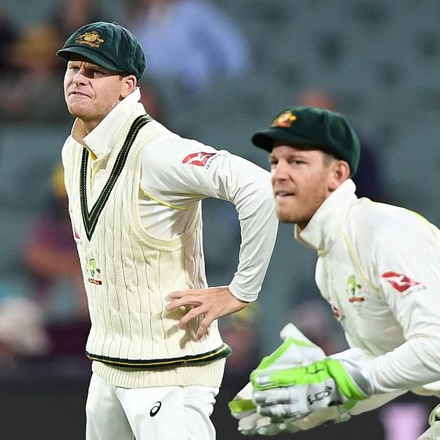 As India beat Australia, netizens troll 'imposter' Steve Smith, Tim Paine on Twitter
