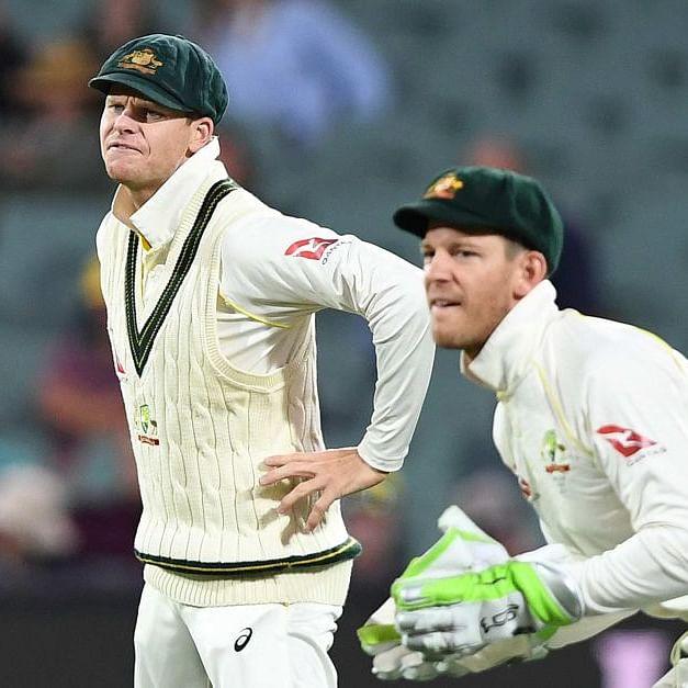 As India beat Australia, netizens troll 'imposter' Steve Smith, Tim Paine on Twitter