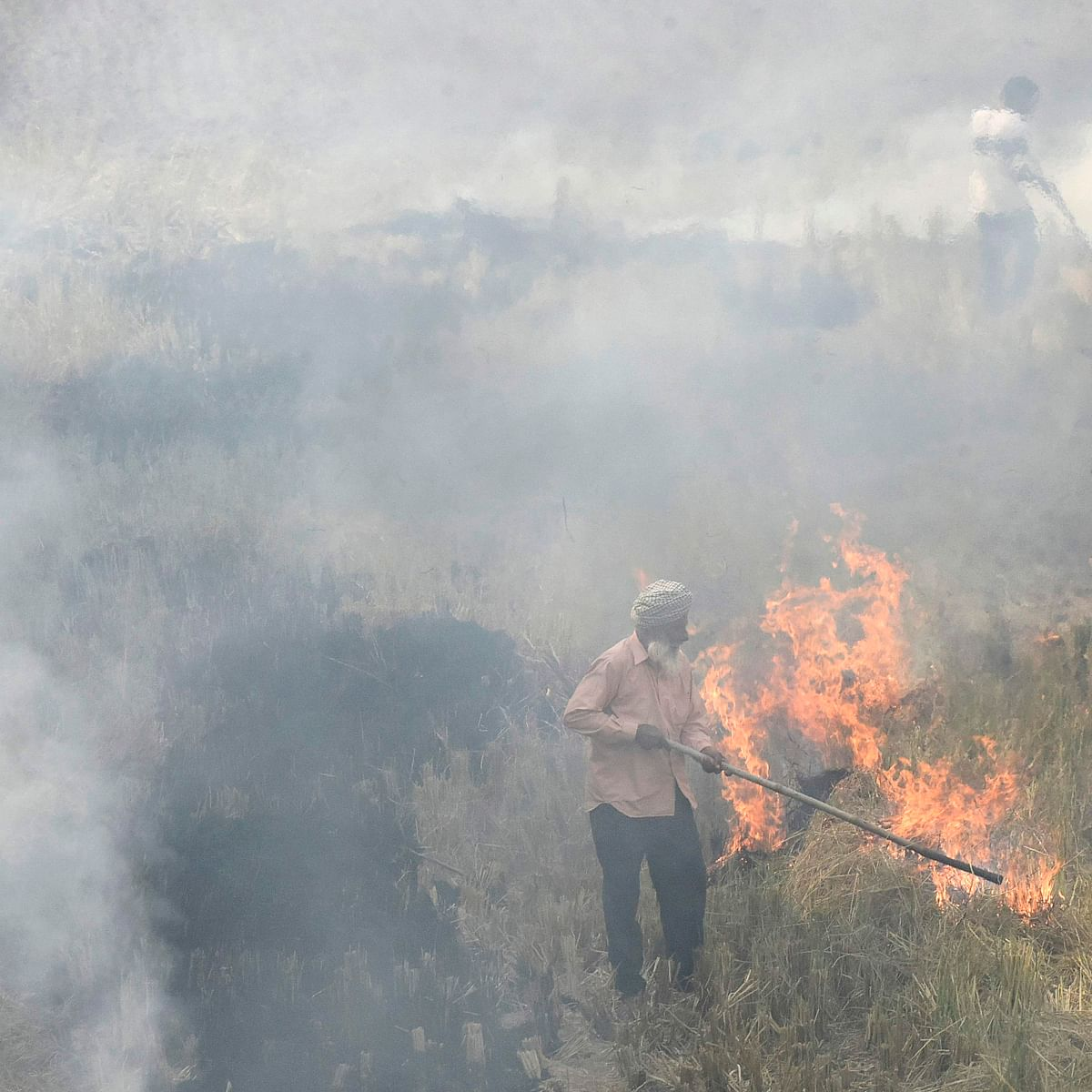 Stubble burning: NGT junks Punjab plea to recover penalty