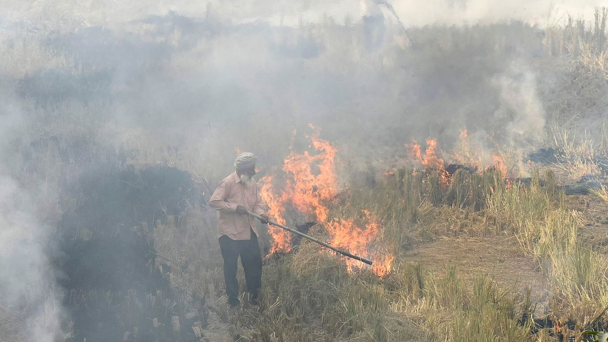 Farmers burn straw stubble after harvesting paddy crops in a field