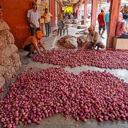 Onionomics: Import norms being eased