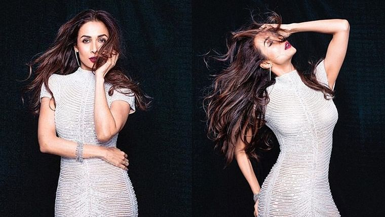 Malaika Arora flaunts her sexy hourglass figure in a shimmery outfit