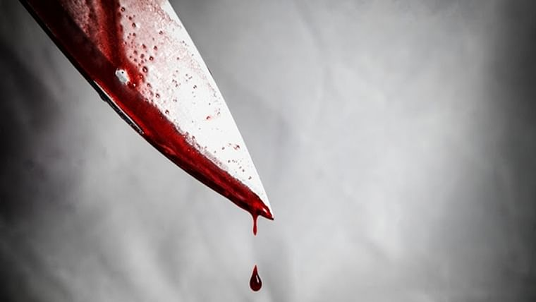 Stabs, leaves and vacays: Bengaluru woman goes on a trip to Andaman after killing mother