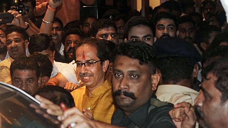 Uddhav Thackeray in, Aarey activists see light