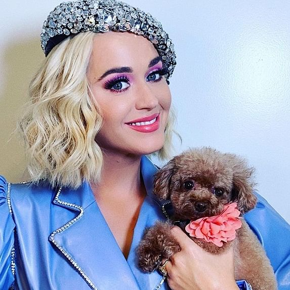 Katy Perry to Perform at ICC Women's T20 World Cup Final in March 2020