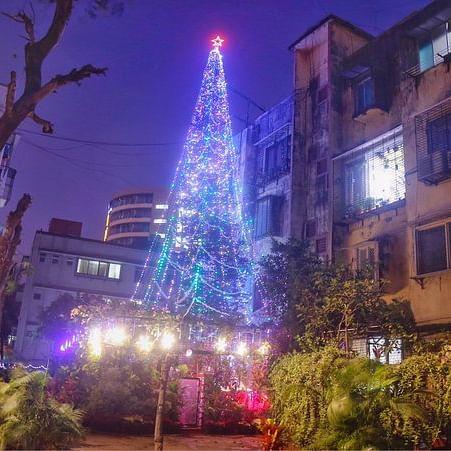 Mumbaikar lights 67-feet Xmas tree using Alexa