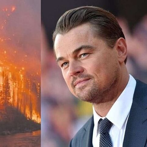 'We don't fund the organizations targeted': Leonard DiCaprio rejects Brazil president's claims about burning Amazon