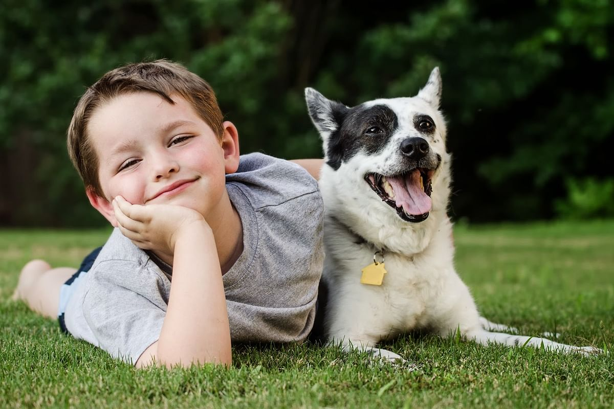 Keeping a dog may benefit your kid later in life