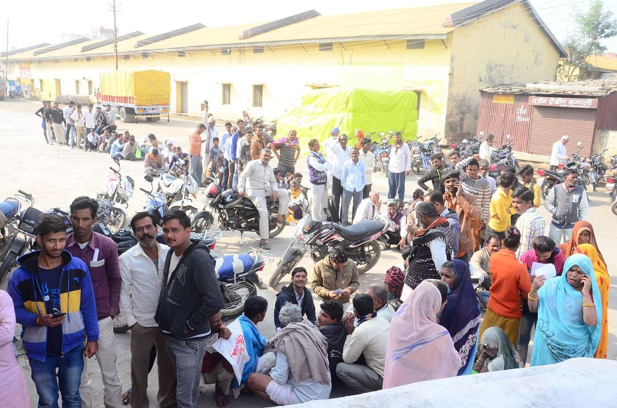 Farmers striving hard to get urea in Ujjain