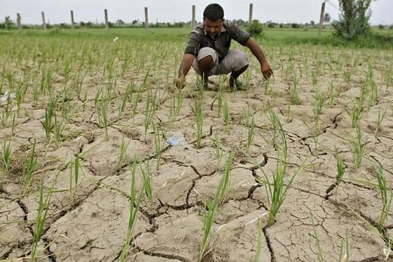 Bhopal: Land acquired by development authorities to be returned to farmers