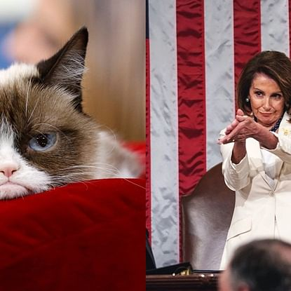 From Grumpy Cat to Covfefe: The 10 viral moments of the decade