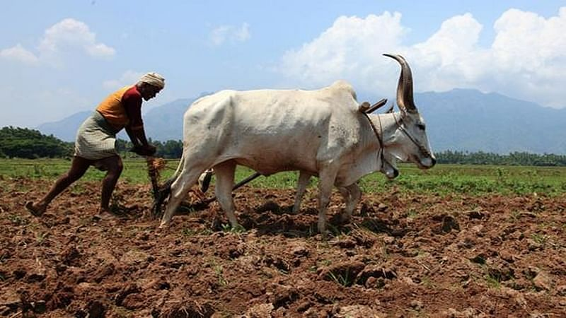 MP farmers may have to wait for second phase of loan waiver till next financial year