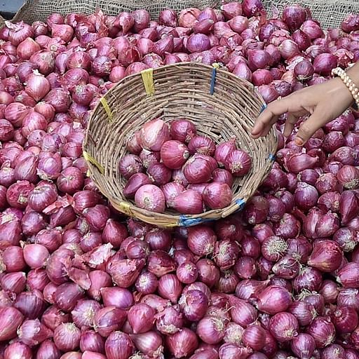 Onion rush: Near-stampede in Andhra Pradesh after government sells onions for Rs 25 per kilo
