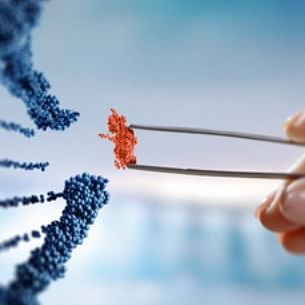 Nanded and Kolhapur to get DNA analysis centre next year