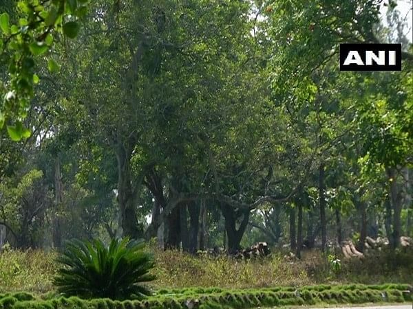 Karnataka: State forest department converts wasteland into medicinal plant garden in Shivamogga