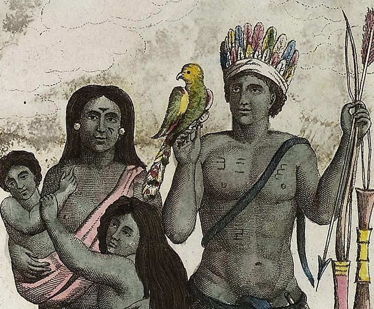 Columbus' cannibal claims on Caribbean may be true