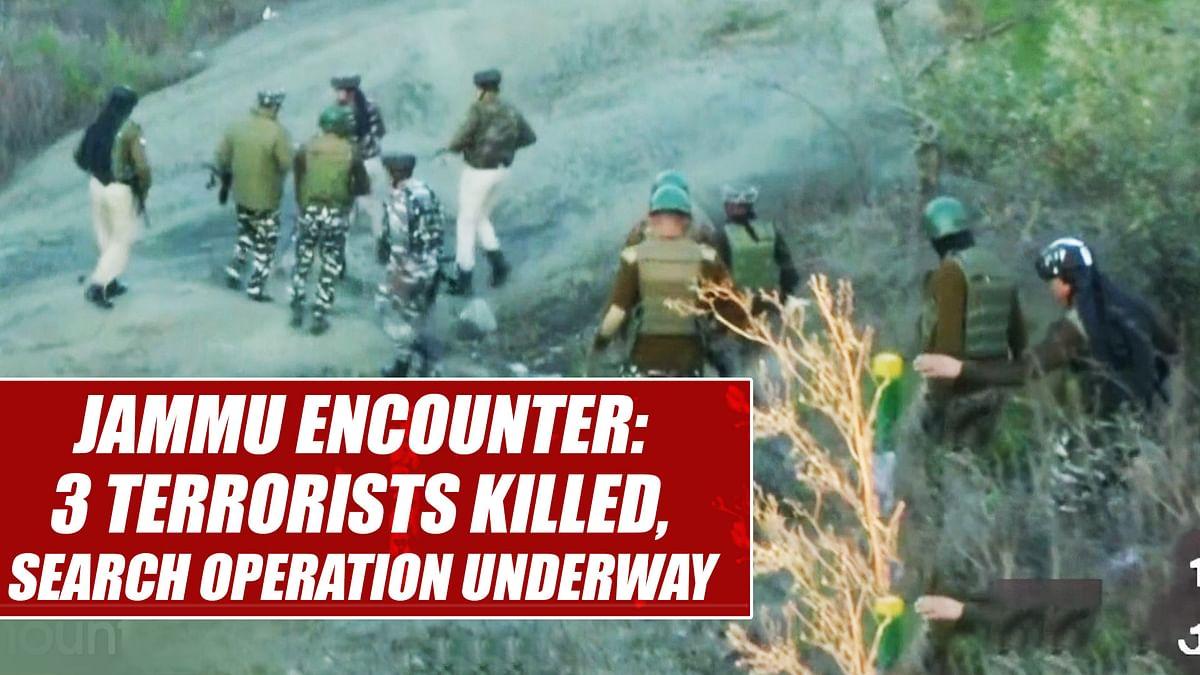 Jammu encounter: 3 terrorists killed, search operation underway