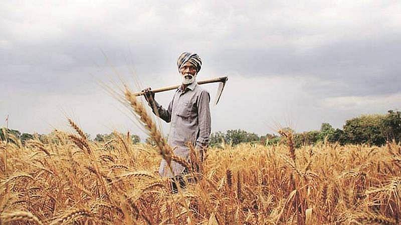 MP govt needs Rs 16K crore to waive farm loan