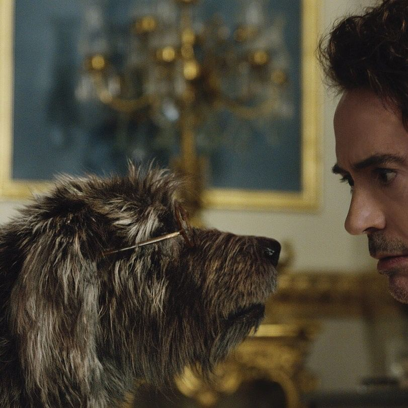 Dolittle Movie review: Whimsical fantasy adventure