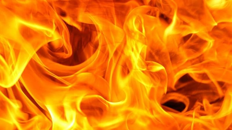 Mumbai: Fire breaks out in Vasai Fort, no casualty