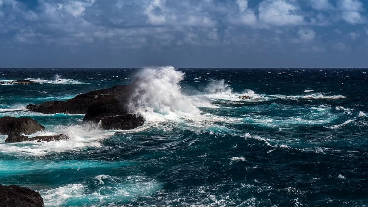World's oceans continue to warm, despite reduced carbon emissions - Free Press Journal