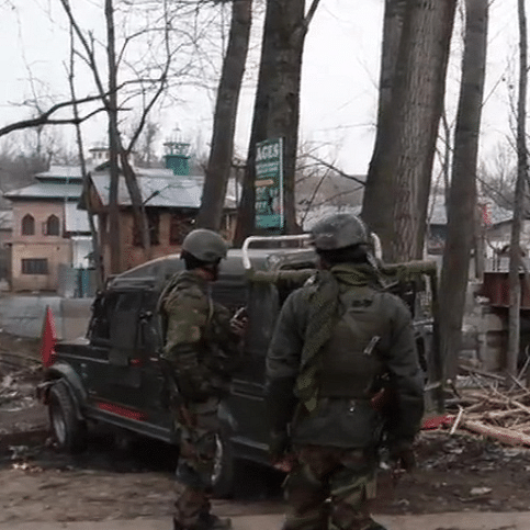 Awantipora encounter: Security forces kill 2 terrorists