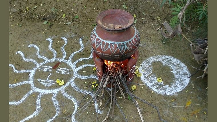 Pongal 2020: Photos, wishes, messages for the Tamil harvest festival