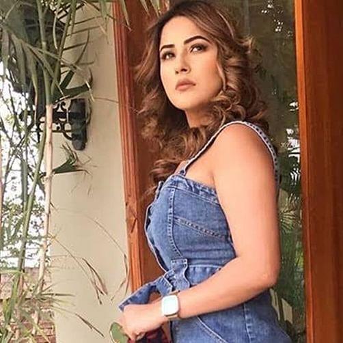 Shehnaaz ka Swayvamvar: Bigg Boss 13 participant to look for her groom through a TV reality show?