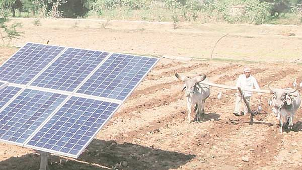 Indore: Discoms to buy surplus power from farmers' solar panels