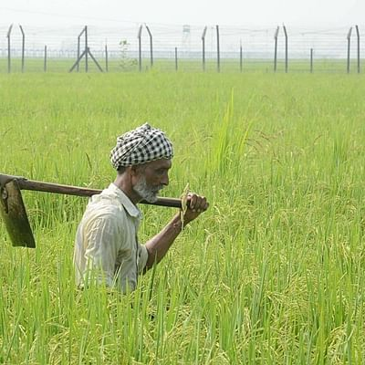 SIES-FPJ: Why agriculture matters for India