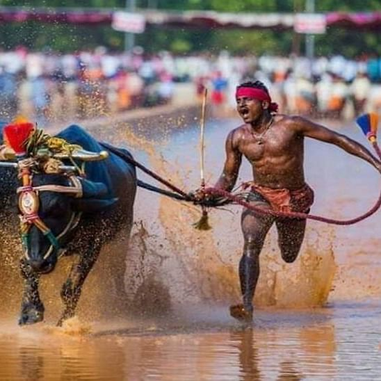Indian Usain Bolt: Sports Min calls Kambala racer for trials