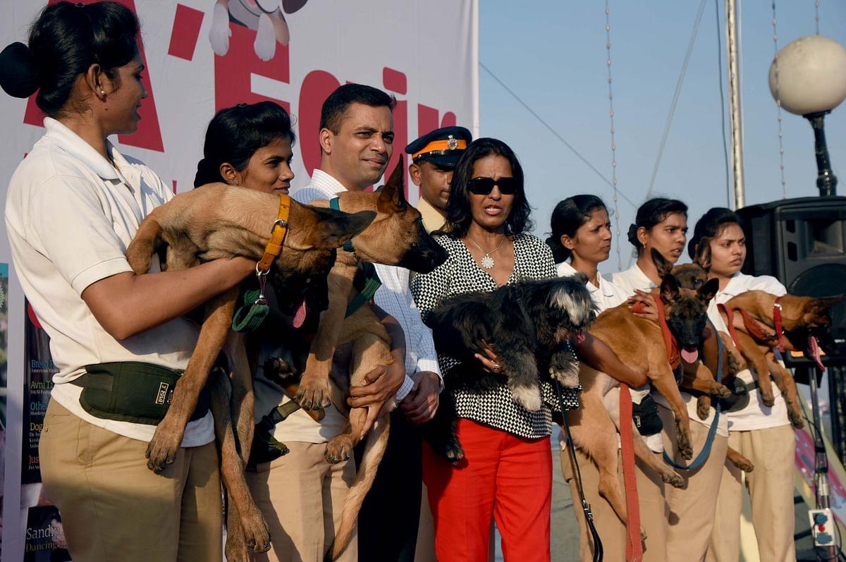 Coronavirus in Mumbai: People disown pets over virus transmission rumours