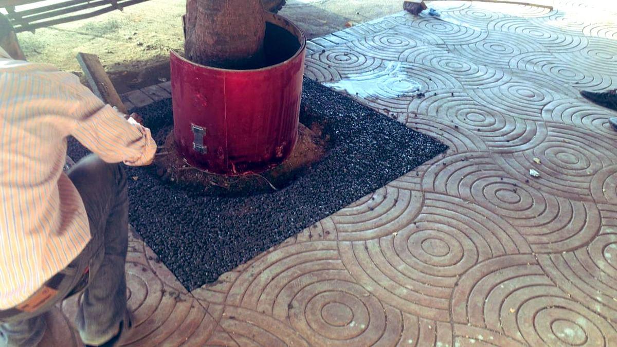 Mumbai: To aid ground water retention, BMC's G ward to use porous concrete