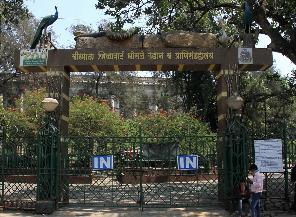 Mumbai's Byculla Zoo remains close amid coronavirus pandemic.