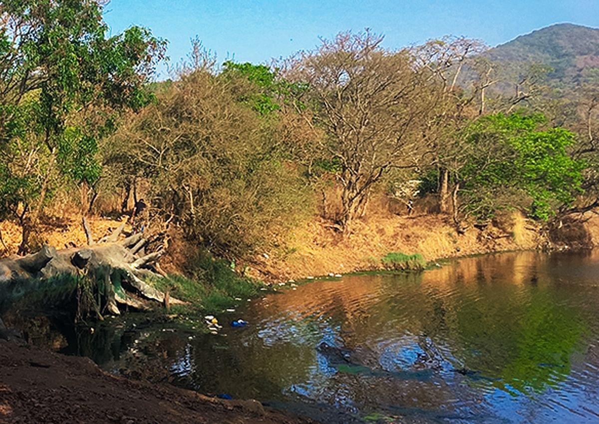 Mumbai: Dam on Chena river to tap rainwater