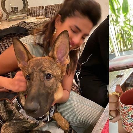 Books, dogs and wine: Priyanka Chopra, Sunny Leone, Twinkle Khanna practice social distancing amid coronavirus
