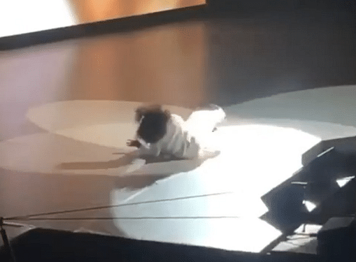 Watch: Oprah Winfrey falls on stage while talking about balance