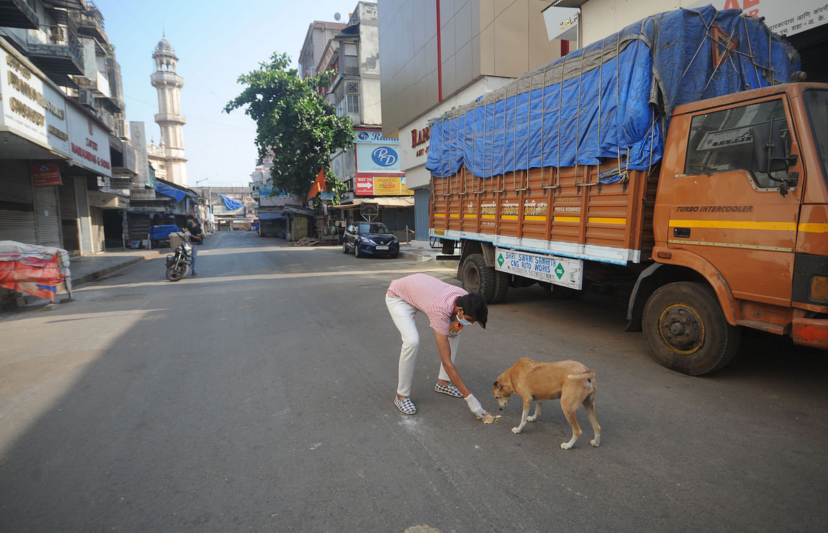 Coronavirus news of Indore: Anti-Corona Squad feeding 20,000 people and animals daily in times of ditress