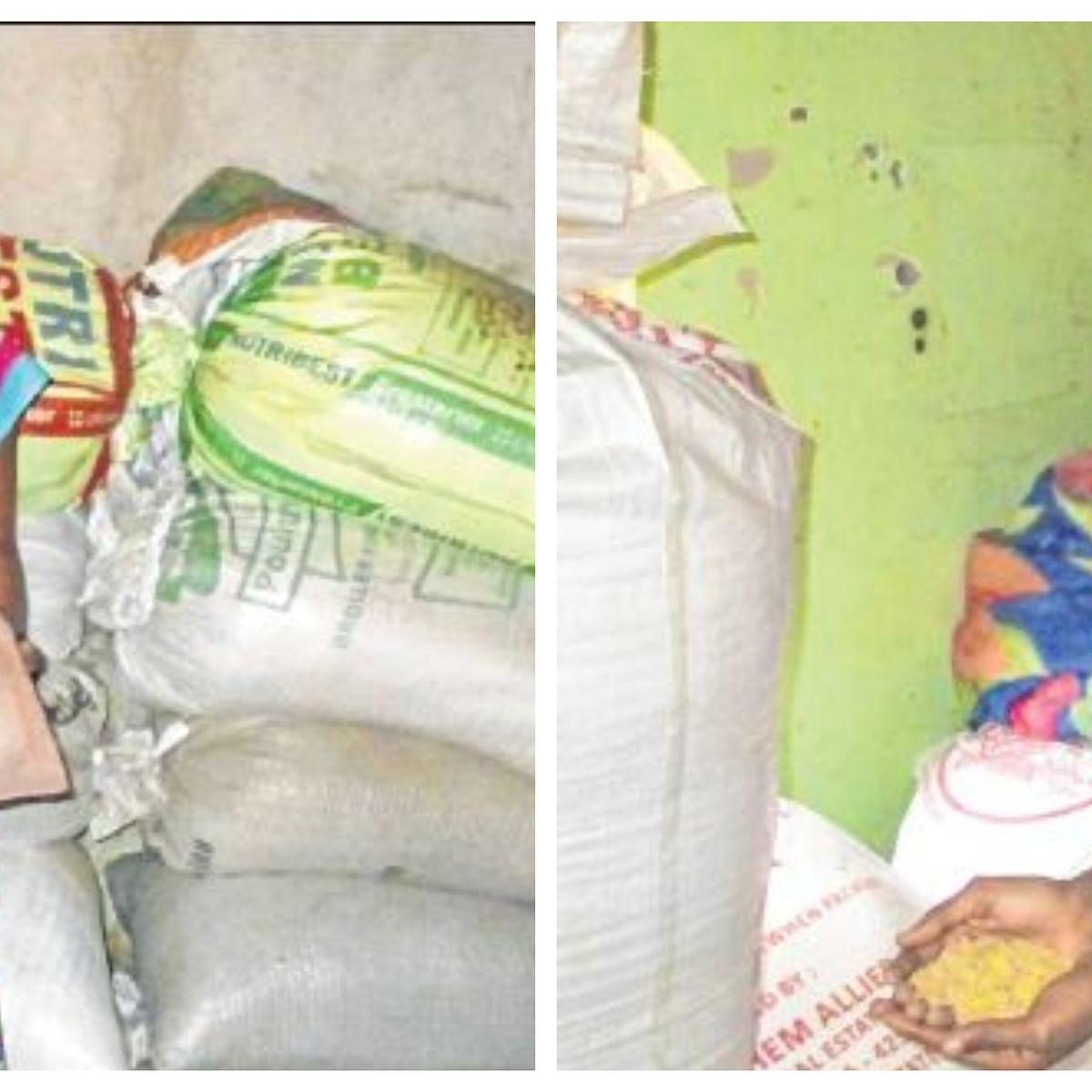 International Women's Day 2020: Maharashtra women farmers return to grow indigenous varieties of rice
