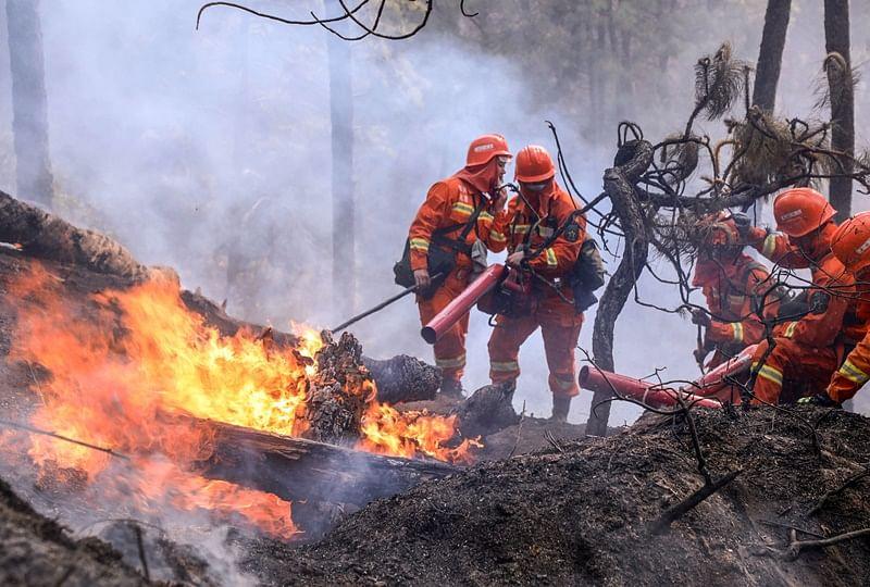 China forest fire kills 19