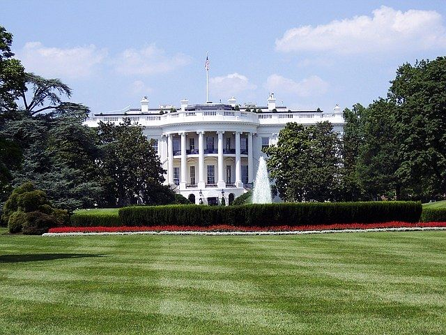 White House says Trump not firing Fauci