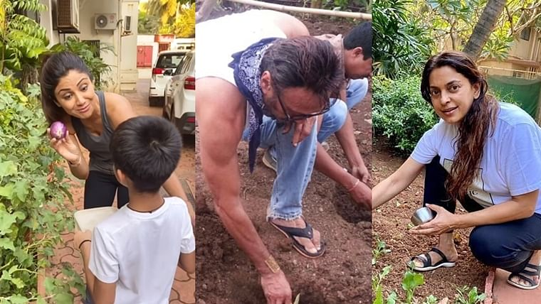 Earth Day 2020: Bollywood celebs turn farmers, reap benefits amid lockdown