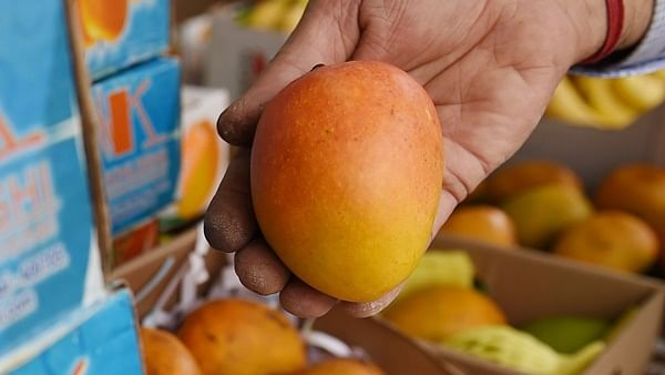 Coronavirus in Mumbai: No takers for the king of fruits